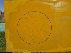 fiocchi-4-hv-28-grammi-9