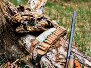 Fucili semiautomatici con sette cartucce, segnalati due cacciatori