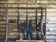 Revoca del porto d'armi è legittima in caso di procedimenti penali