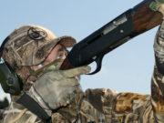A ridosso della stagione venatoria Sauer ha lanciato il nuovo SL5, fucile semiautomatico da caccia a sistema di ricarica inerziale.