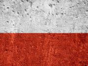 Il governo polacco si associa all'azione legale della Repubblica Ceca contro la Direttiva Armi e ne chiede la sospensione: lo riporta Firearms United.
