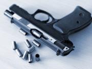 Federcaccia Vittorio Veneto Riserva Alpina 32 utilizzo armi