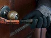 Burglar breaks door
