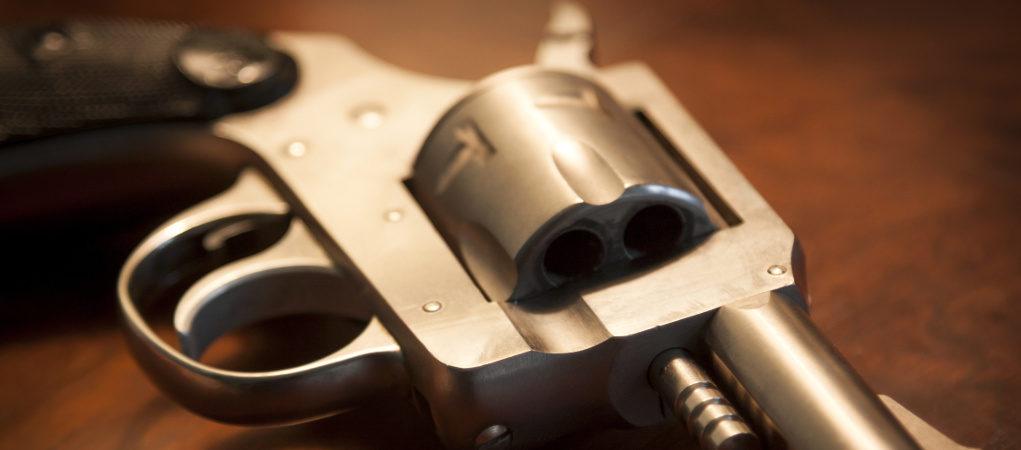 Leggi pro-armi
