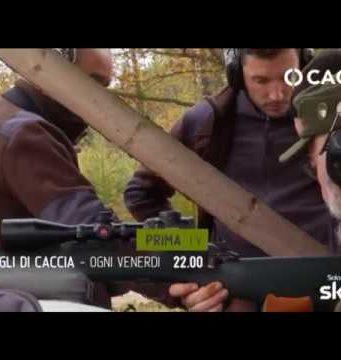 caccia in tv sky caccia 235 giugno zanon taveggia