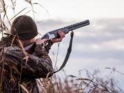 cacciatore di spalle: legge sulla caccia del Piemonte