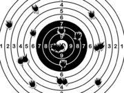 Bersaglio per gare di tiro con armi ordinanza ed ex ordinanza
