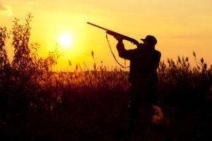 cacciatore al tramonto: il ministro dell'Ambiente contro la caccia di domenica