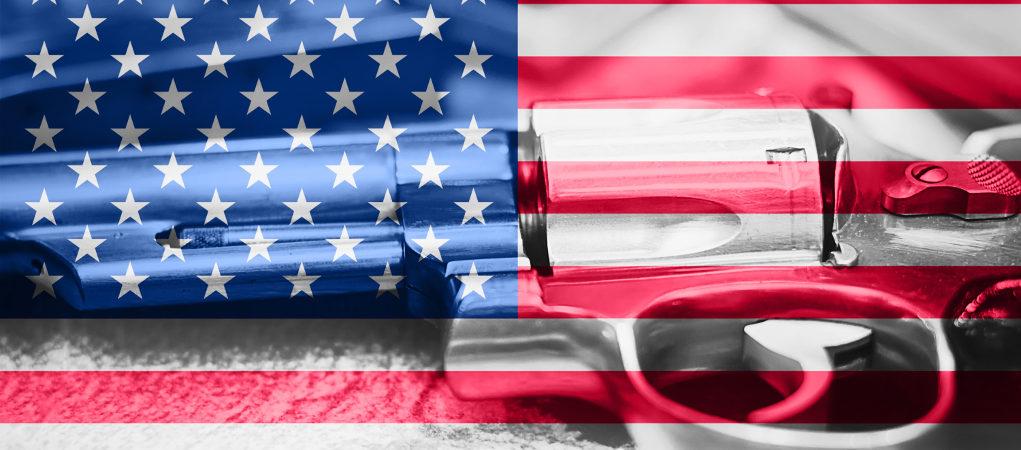 Elezioni midterm Stati Uniti armi