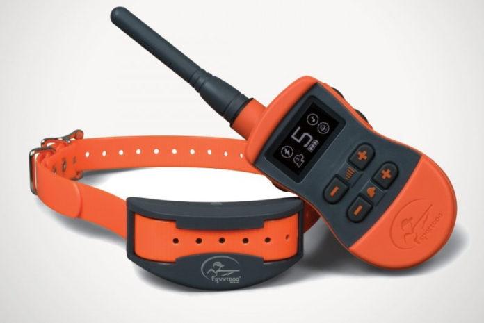 sport dog sport trainer SD-1275E collare educativo per cani