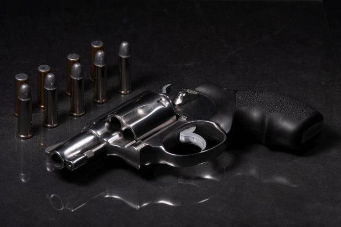 revolver 38 con dieci proiettili, manifesto per i diritti dei possessori di armi