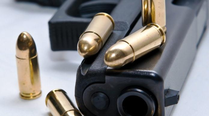 pistola appoggiata su un fianco con cinque proiettili: la proposta del pd sul porto d'armi