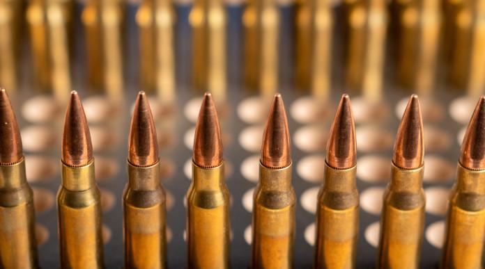 Commento alla sentenza del Consiglio di Stato sulla detenzione di munizioni